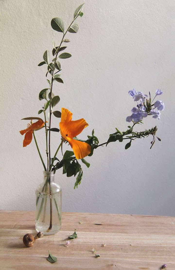 lili-cuzor-gardenista-four