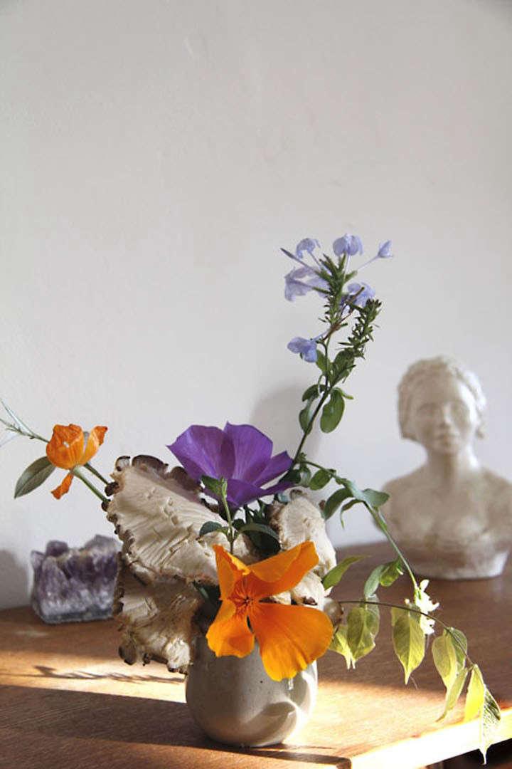 lili-cuzor-gardenista-seven
