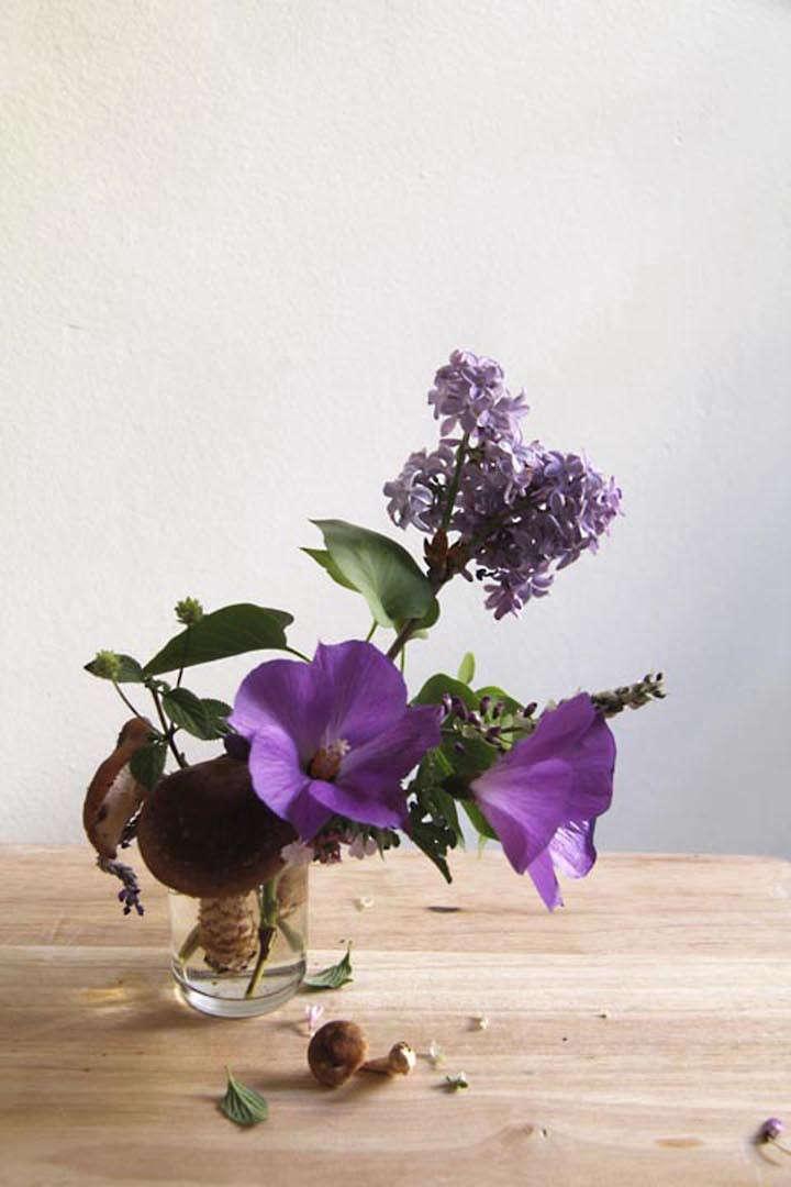 lili-cuzor-gardenista-three