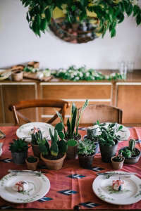 steal this look: potted plant table top from local milk | gardenista
