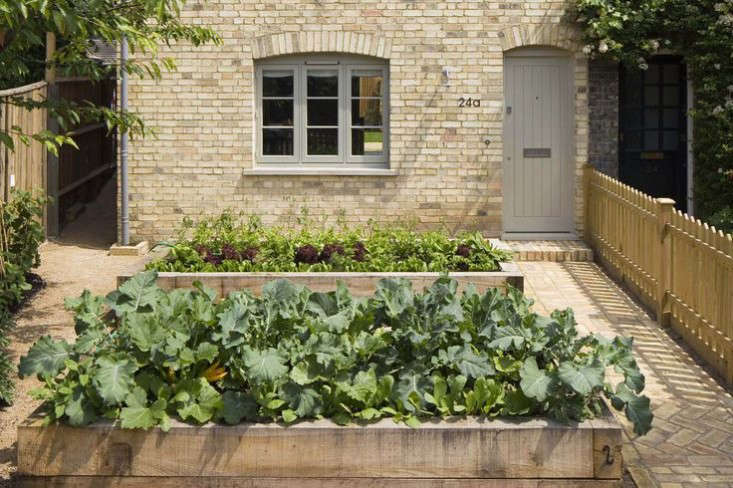 london-edible-garden-dorset-sam-tisdall-2-gardenista