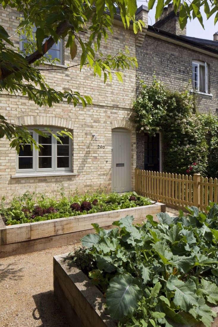 london edible garden front yard sam tisdall gardenista