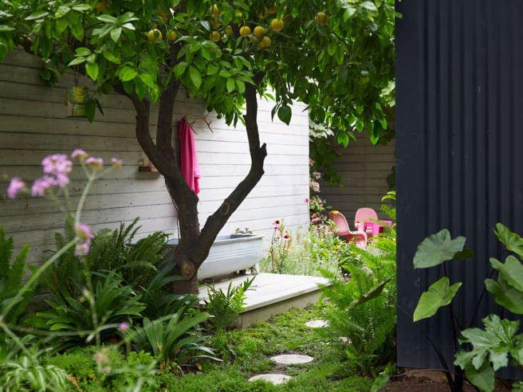 los-feliz-outbuilding-cottage-alexandra-angle-gardenista-4