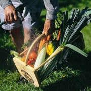 maine-garden-hod