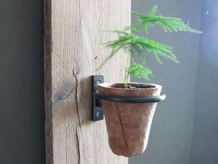 makr-plant-ring-gardenista