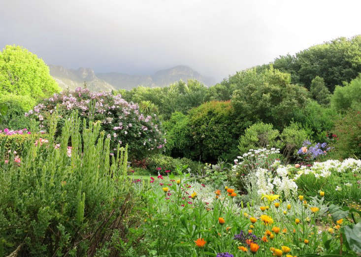 marie-viljoen-bedroom-view-garden-south-africa-gardenista