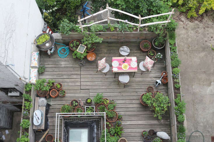 marie-viljoen-harlem-terrace-in-may-gardenista