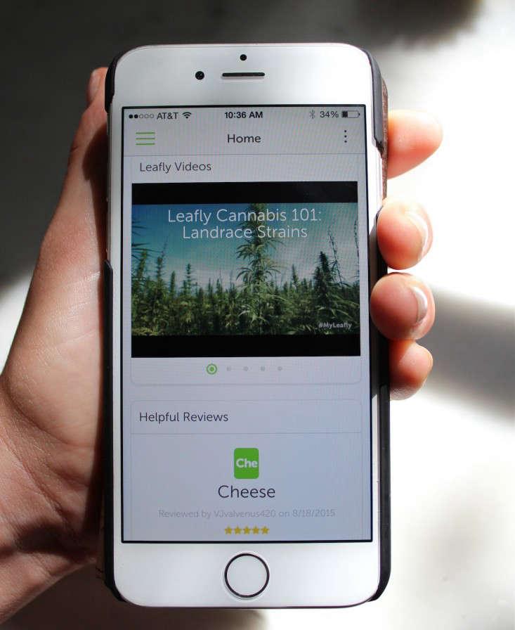 marijuana-growing-apps-2-gardenista