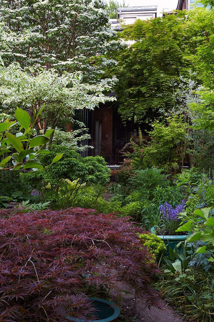 marjorie-harris-center-dining-room-view-gardenista