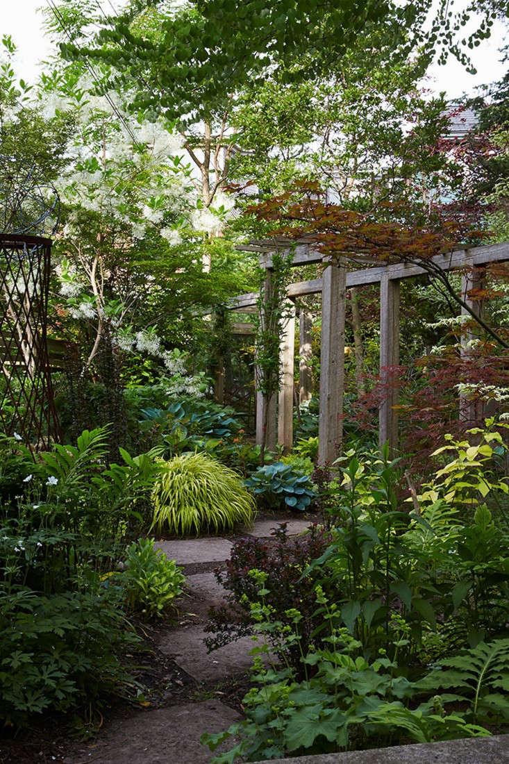 marjorie-harris-toronto-garden-gardenista-16