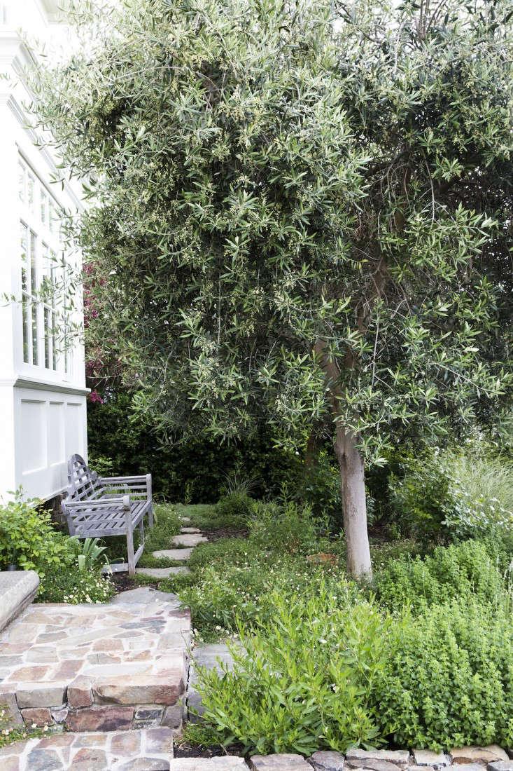 mediterranean-garden-linsteadt-20-gardenista