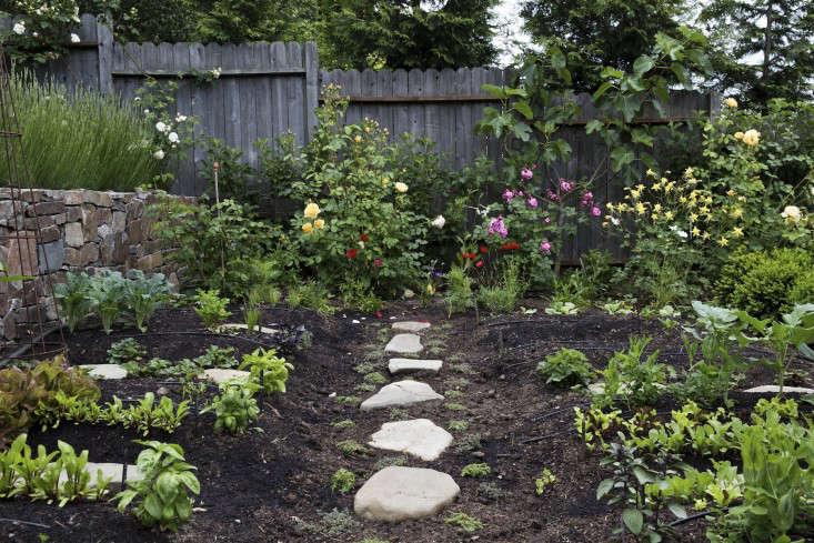 mediterranean-garden-linsteadt-4-gardenista