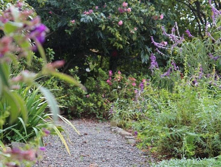 michelle-garden-gravel-path-gardenista