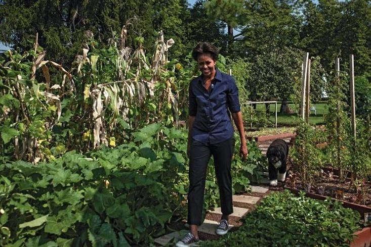 Hardscaping 101 Edible Gardens Gardenista