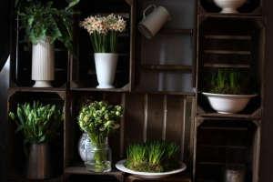 Miss Pickering flowers, Stamford, UK. Gardenista