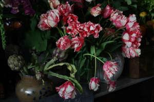 Miss Pickering's flowers, Stamford, UK. Gardenista