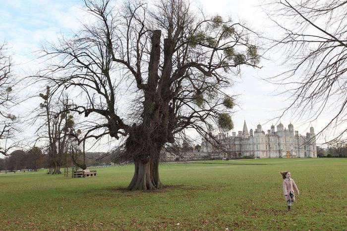 mistletoe-balls-tree-burghey-UK-gardenista-2