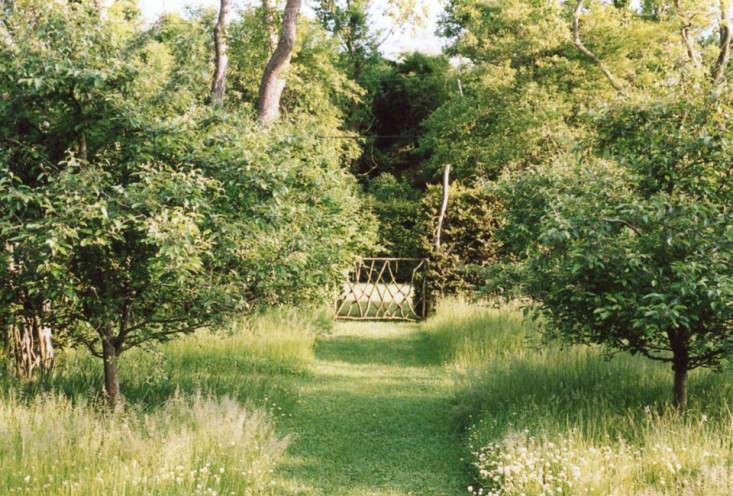 Landscape on a Budget 11 Ideas for a Summer Grass Path