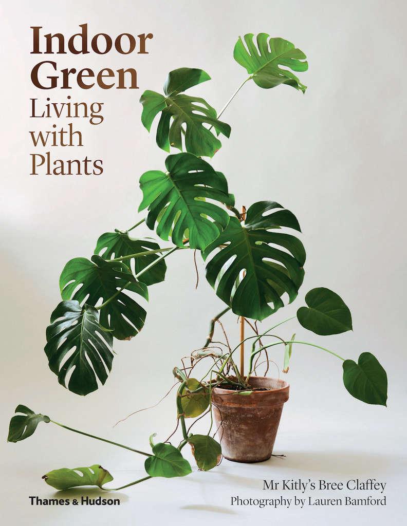 Indoor green living with plants gardenista for Indoor green plants images