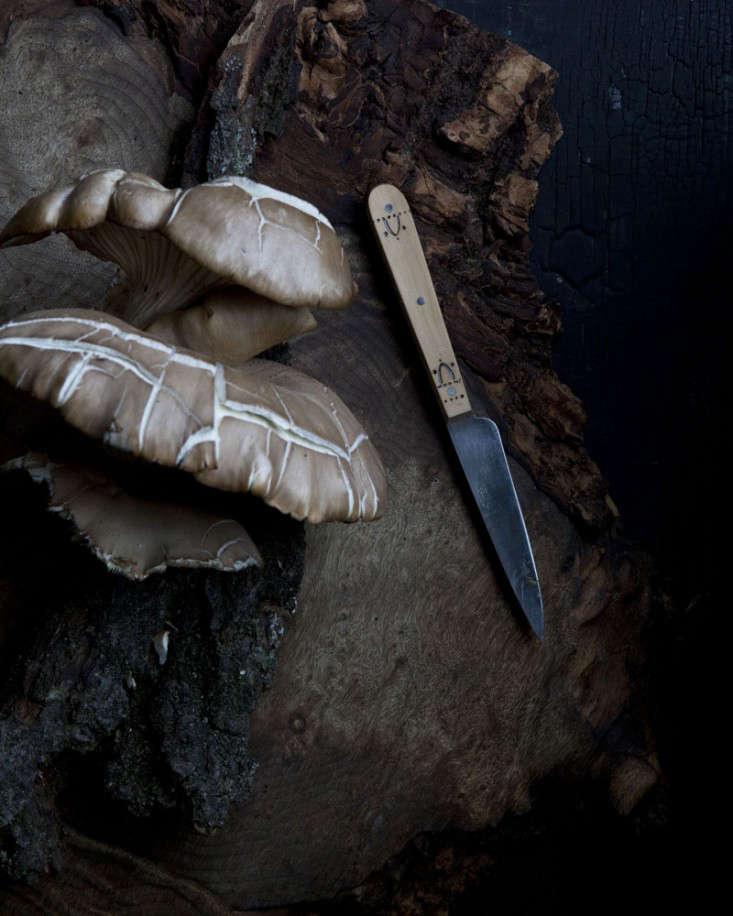 mushrooms-with-knife-andrea-gentl