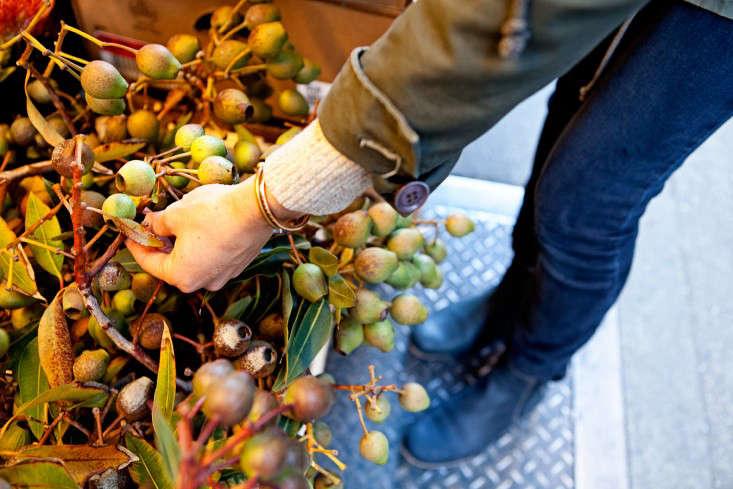 nyc-flower-market-11-rebecca-baust-gardensita