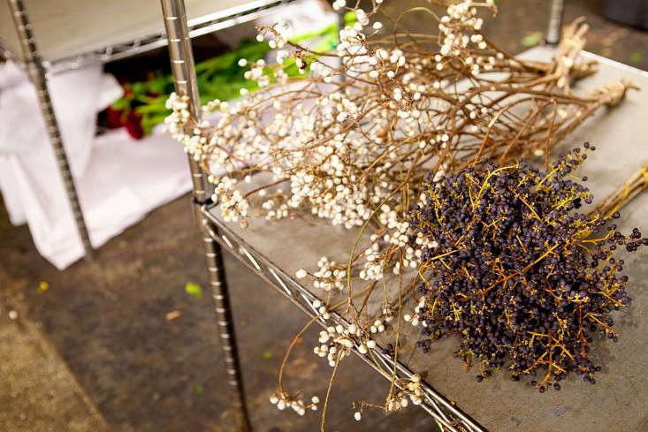 nyc-flower-market-13-rebecca-baust-gardensita