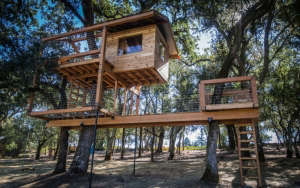 o2 Treehouse, Two Story Treehouse in Calistoga, California | Gardenista