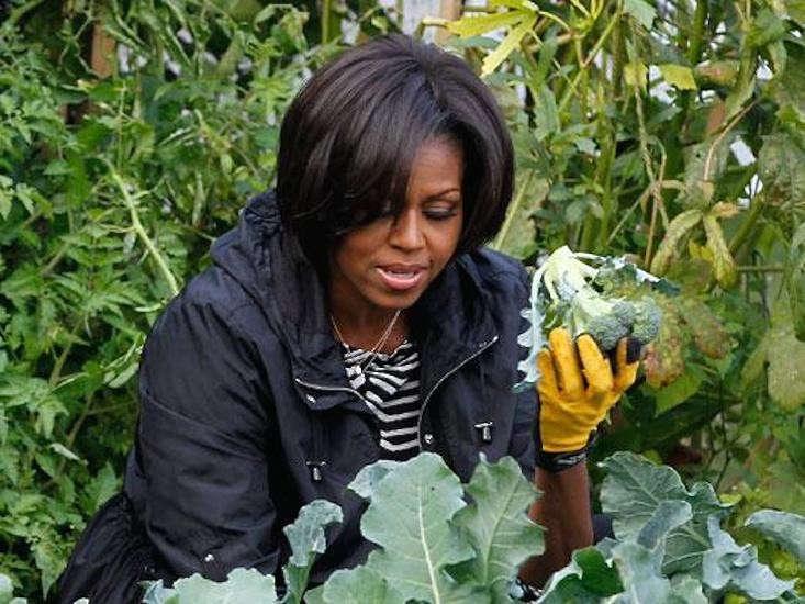 obama-white-house-garden-gardenista