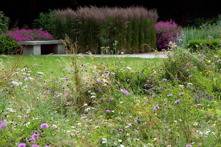 old-rectory-bench-and-meadow-wildflowers-gardenista