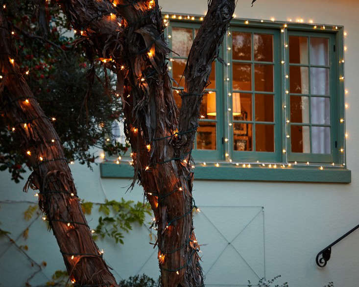outdoor holiday string lights wrap tree l Gardenista