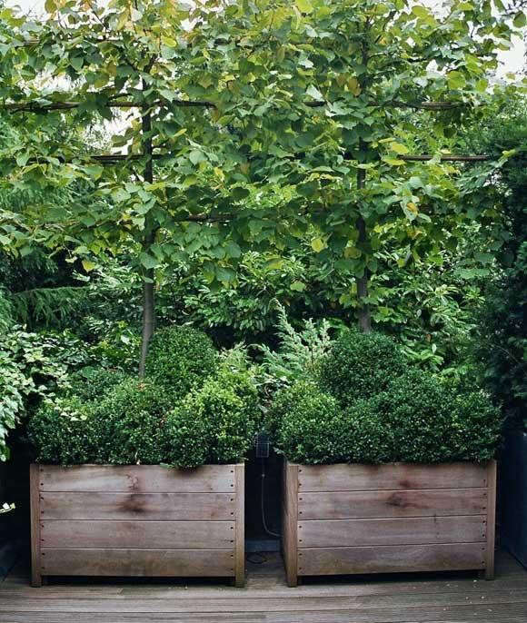 outstanding-square-planters-ort-gardenista