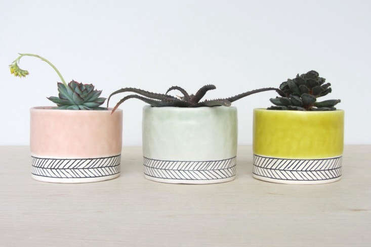 pastel-mini-planters-elizabeth-benotti-gardenista