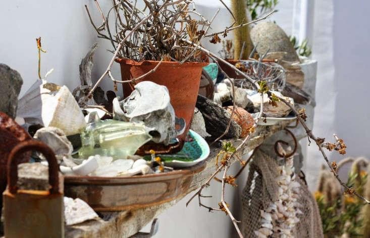 paternoster-shelf-marie-viljoen-gardenista