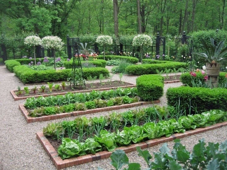 Hardscaping 101: Edible Gardens: Gardenista