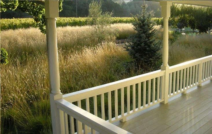 perennial-grasses-as-front-lawn-alternative-lucas-lucas-gardenista