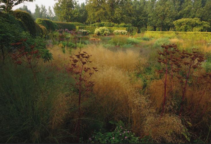 piet-oudolf-hummelo-garden-grasses-gardenista