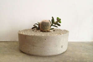 Plain Concrete Planter from Tasi Masi | Gardenista