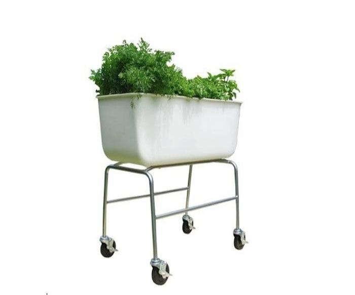 planter-on-wheels