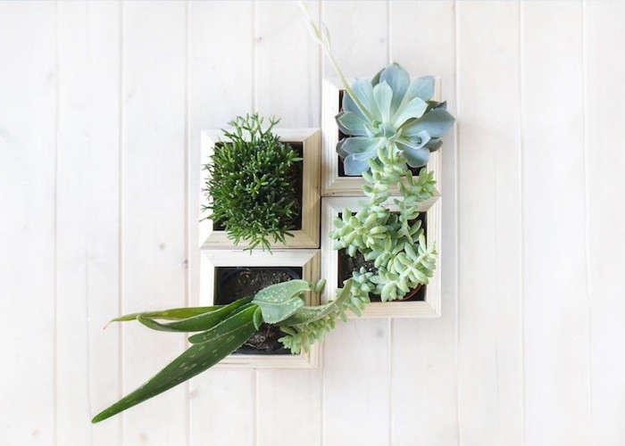 planterboxes=topview
