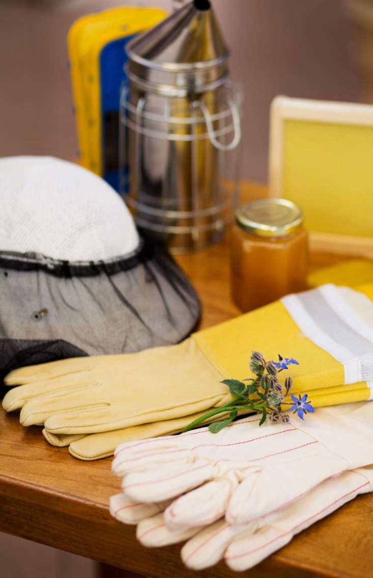 pollinate-beekeeping-liesa-johannssen-gardenista