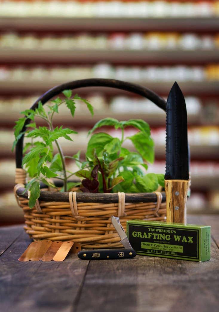 pollinate-tools-liesa-johannssen-gardenista