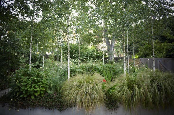 primrose-hill-garden-jb-planters