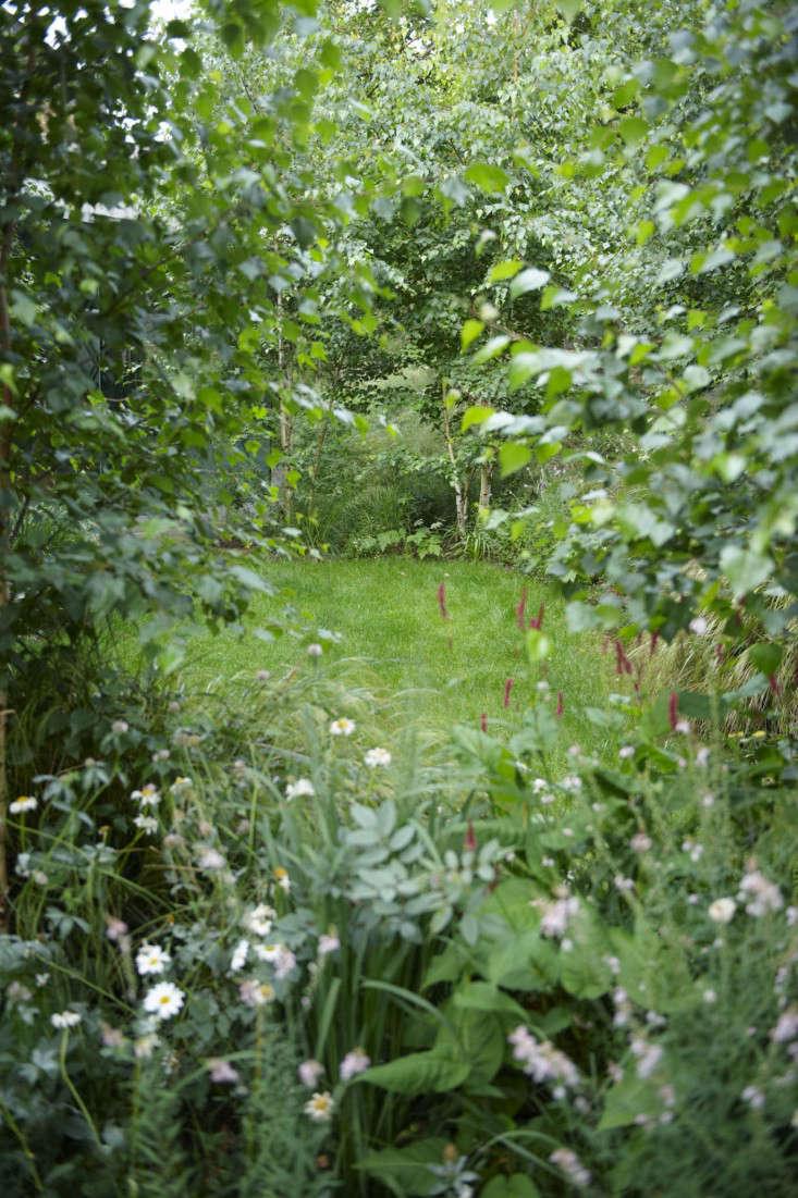 primrose-hill-garden-jb-vertical
