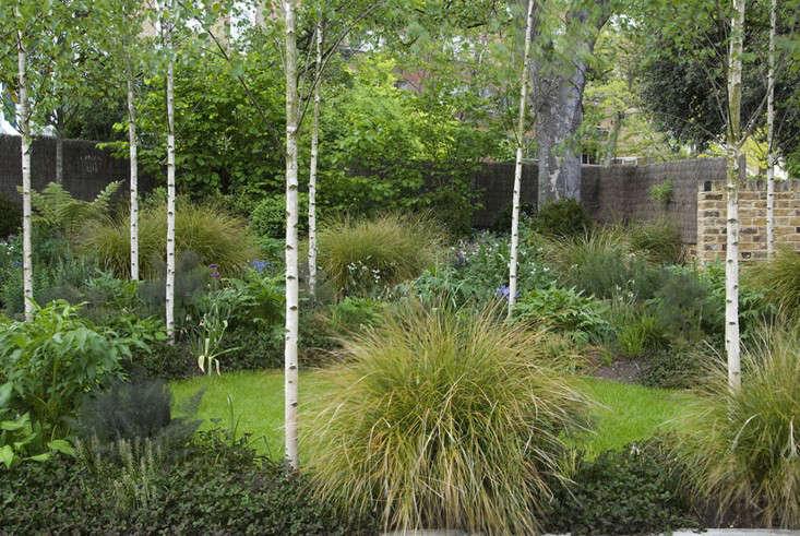 primrose-hill-garden-nbrown-photo-1