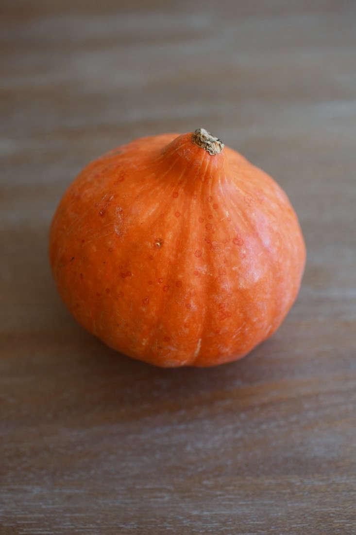 pumpkinsoup-1-oliviaraejames-gardenista