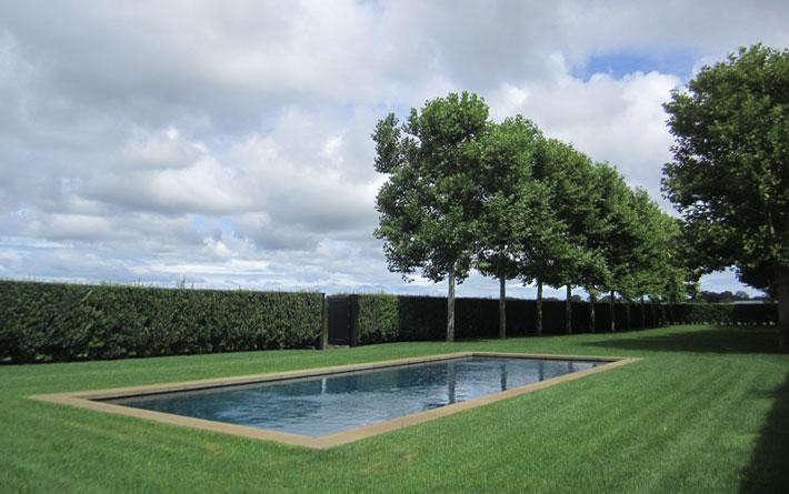 quincy-hammond-watermill-garden-6