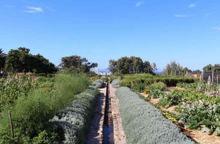 rill-oranjezicht-city-farm-gardenista