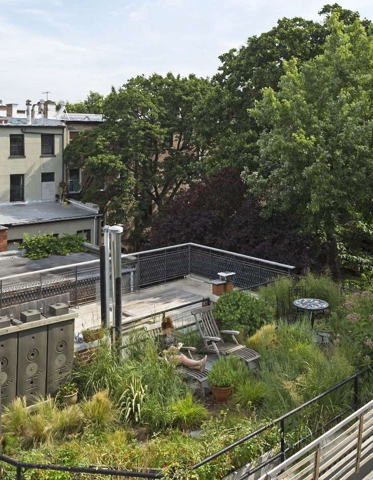 roof-garden-fort-greene-brooklyn-alive-structures-1-gardenista
