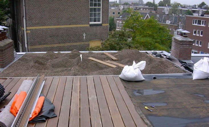 A Rooftop Garden For All Seasons In Rotterdam Gardenista