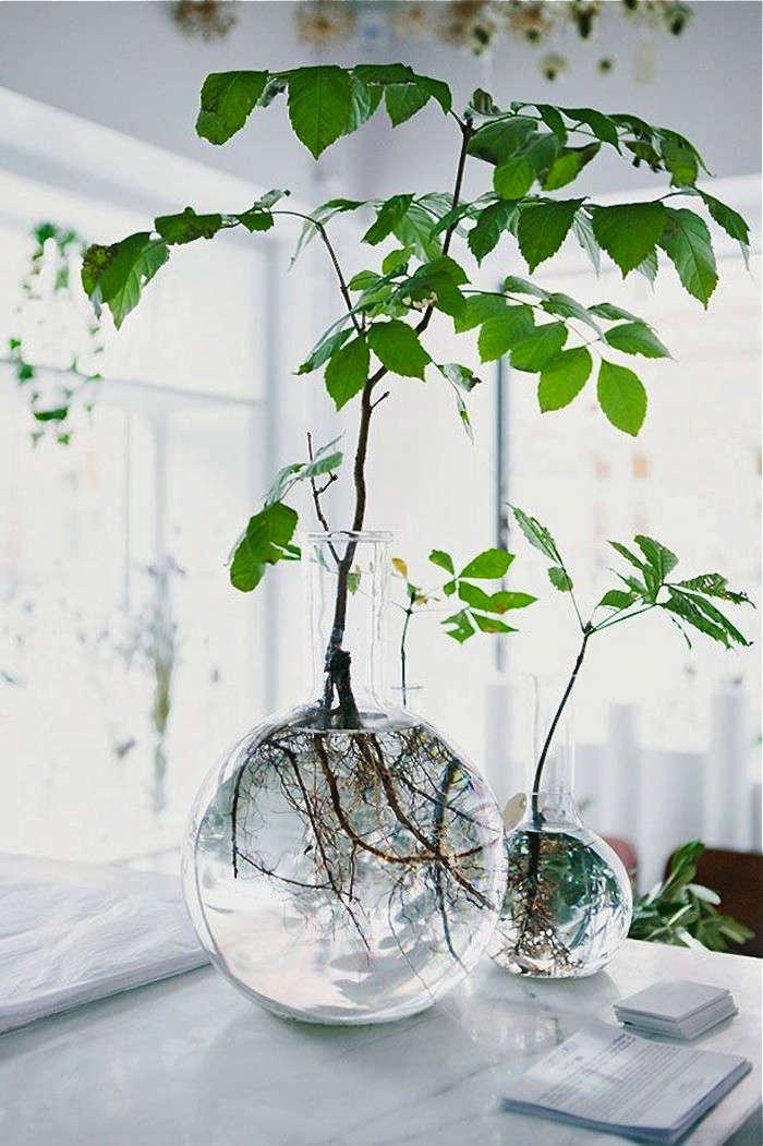 10 easy pieces labware vases gardenista. Black Bedroom Furniture Sets. Home Design Ideas